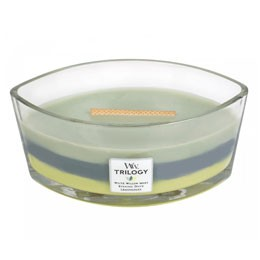 WW Trilogy Woodland shade Ellipse Candle