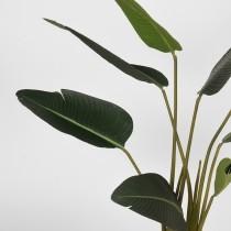 LABEL51  Strelitzia - Groen - Kunststof - 100 cm